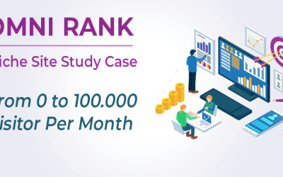 Adsense Niche Site Case Study (From 0 to 100.000 Visitor Per Month)