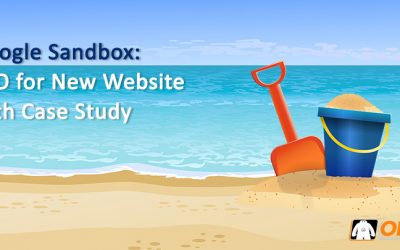 Google Sandbox: SEO for New Website with Case Study